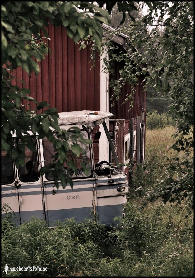 Klicka på lastbilen så kommer fler bilder..